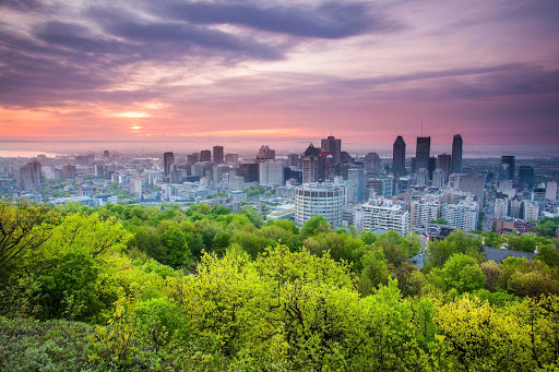 A scenic view from a hilltop overlooking the Montreal cityscape.