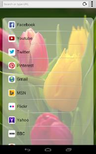 Instabrowser screenshot
