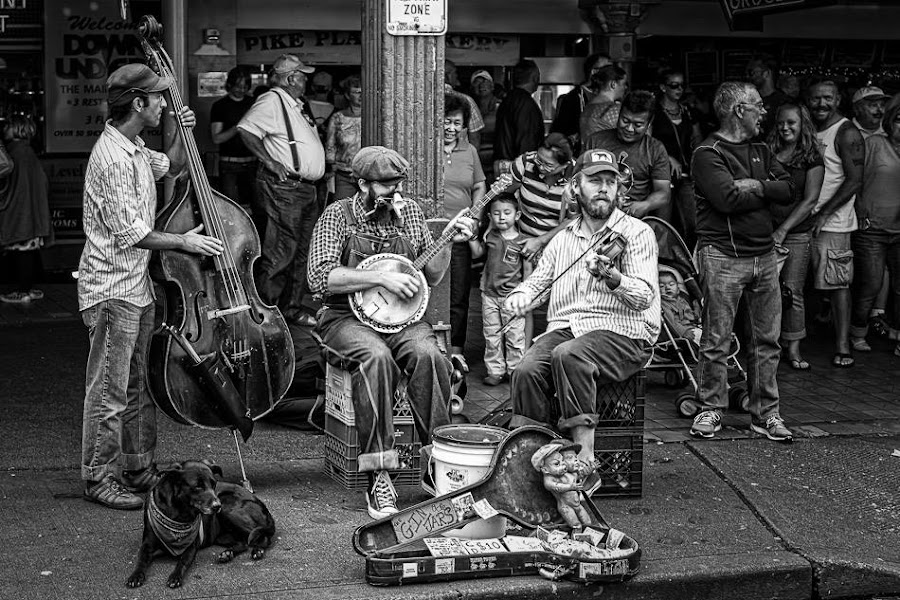 The Gin Jars by Matt Harvey - People Musicians & Entertainers
