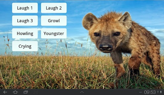 Laughing Hyenas- screenshot thumbnail