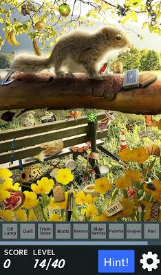 Hidden Object - Spring Babies - screenshot
