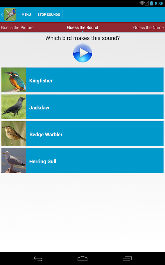 UK Birds Sounds Free- screenshot