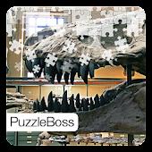 Dinosaur Fossils Jigsaws