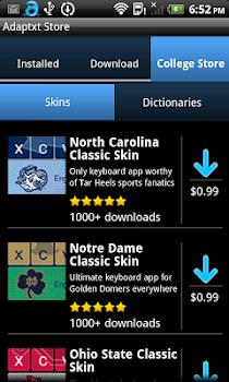 Notre Dame Classic Skin