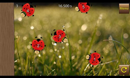 Beetle Q - Logic Quiz Game