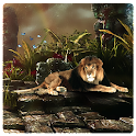 Lion Hunting Deer Free icon