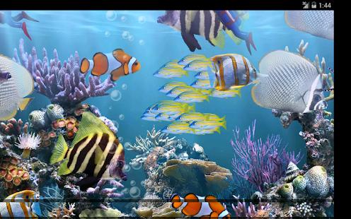 Tropical Aquarium Slots - Try the Free Demo Version