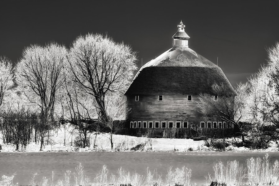 Round Barn by John Stocker - Black & White Buildings & Architecture ( ir, farmstead, wood, black and white, agriculture, round, farming, crop, farm, field, b/w, winter, barn, trees, negative )