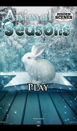 Hidden Scenes - Animal Seasons