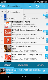 iPP Podcast Player - screenshot thumbnail