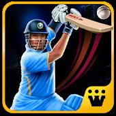 Master Blaster T20 Cricket