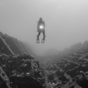 Lone Diver by Alin Miu - Landscapes Underwater ( diver, b&w, underwater, wreck, underwater photography )