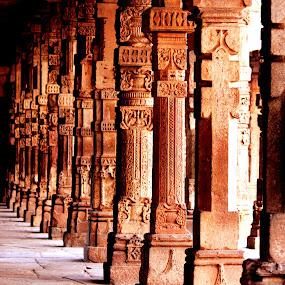 Artistic Pillar  by Vaibhav Nahar - Buildings & Architecture Public & Historical