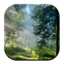 Forest Morning Live Wallpaper mobile app icon