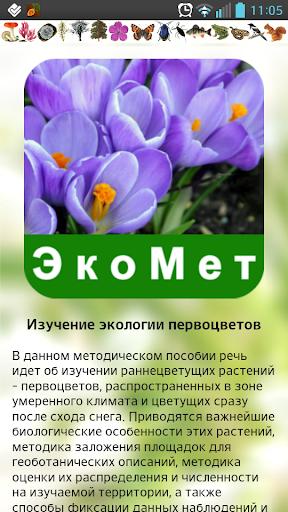ЭкоМет: Первоцветы