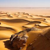 Dunes Wallpapers