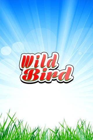 Wild Bird Matching Kids Game