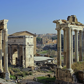 Roman Forum by Tony Murtagh - Buildings & Architecture Public & Historical ( tourist attraction, forum, rome, historical, italy,  )