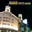 FAKE miniature TOKYO puzzle logo