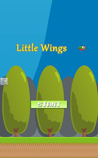 Little Wings