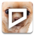 Dogs & Puppies Notifications icon