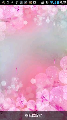 ライブ壁紙!桜花びら〜♡