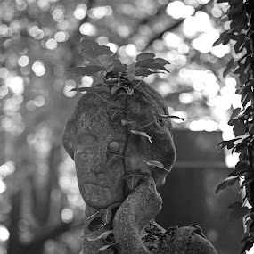 Something in her eye by Christine Schmidt - Black & White Objects & Still Life ( munich, statue, cemetery, leica, historic )