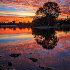 Vasona Sunrise by Paul Judy - Landscapes Waterscapes ( vasona, santa clara county park, los gatos, california, sunrise )
