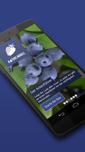 Früchte bestimmen 2 LITE