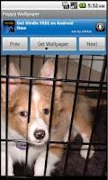 Screenshot of Puppy Wallpaper