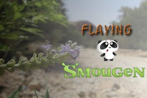 Flying Smougen