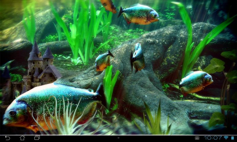 Piranha Aquarium 3D lwp- screenshot
