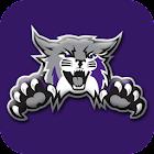 Weber State Wildcats: Premium icon