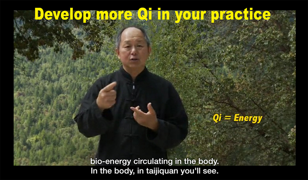 Yang Tai Chi for Beginners 1- screenshot