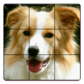 Sliding Puzzle of the dog