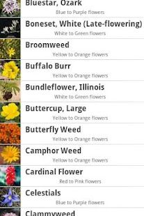 Wildflowers of East Texas - screenshot thumbnail