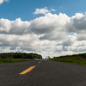 Lonesome Road  by Robert Watson - Landscapes Travel ( clouds, asphalt, lone, road, travel, landscapes, long, country,  )