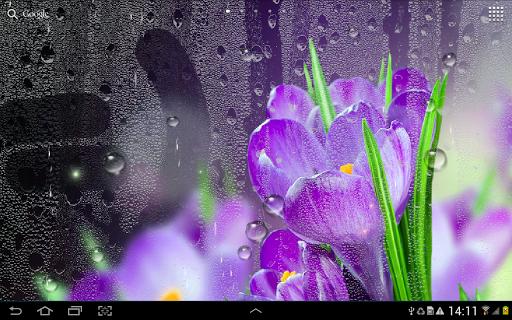 Rain Live Wallpaper 1.0.9 screenshots 10