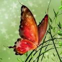 Hidden Garden Enchantment icon