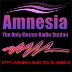 Amnesia Electro Radio icon