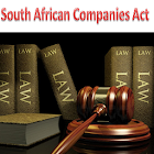 South Africa Companies Act icon