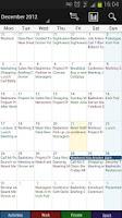 Screenshot of Business Calendar Pro