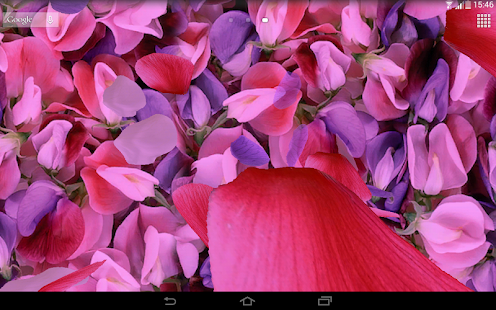 App Petals 3D live wallpaper APK for Windows Phone