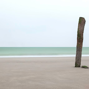 Lonely on the beach by Steve De Waele - Landscapes Beaches