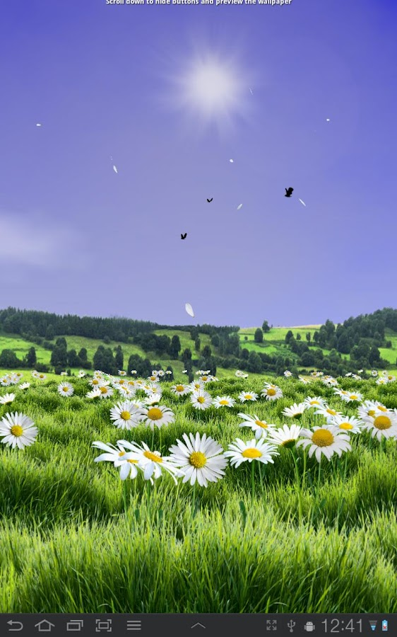 Lovely Daisies Free - screenshot