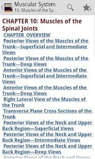 The Muscular System Manual - screenshot thumbnail
