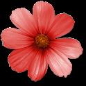 [幸運暦]cocoloni占いコレクション logo