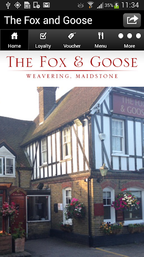 The Fox And Goose