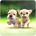 3D Cute Lovely Dog logo