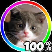 Cat Battery Widget